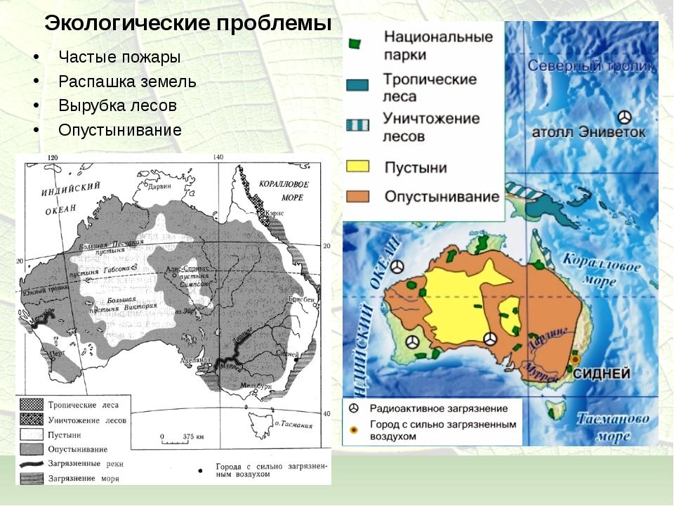 Экологические проблемы Частые пожары Распашка земель Вырубка лесов Опустынива...