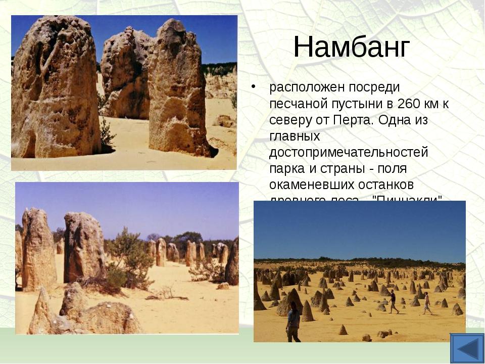 Намбанг расположен посреди песчаной пустыни в 260 км к северу от Перта. Одна...