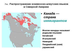 Рис. Распространение эскимосско-алеутских языков в Северной Америке Многие ка