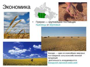 Экономика Прерии— крупнейший поставщик пшеницы и зерновых Канада— один из в