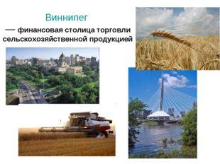 Виннипег — финансовая столица торговли сельскохозяйственной продукцией