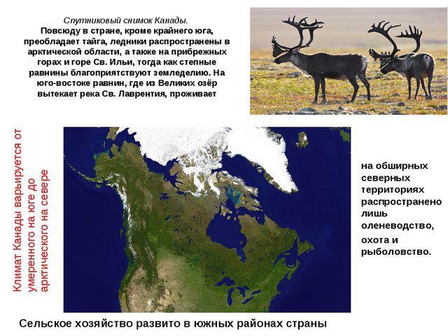 Спутниковый снимок Канады. Повсюду в стране, кроме крайнего юга, преобладает...