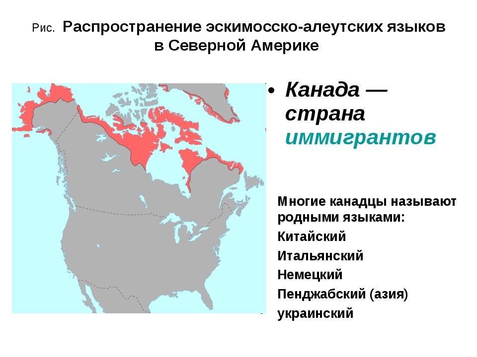Рис. Распространение эскимосско-алеутских языков в Северной Америке Многие ка...