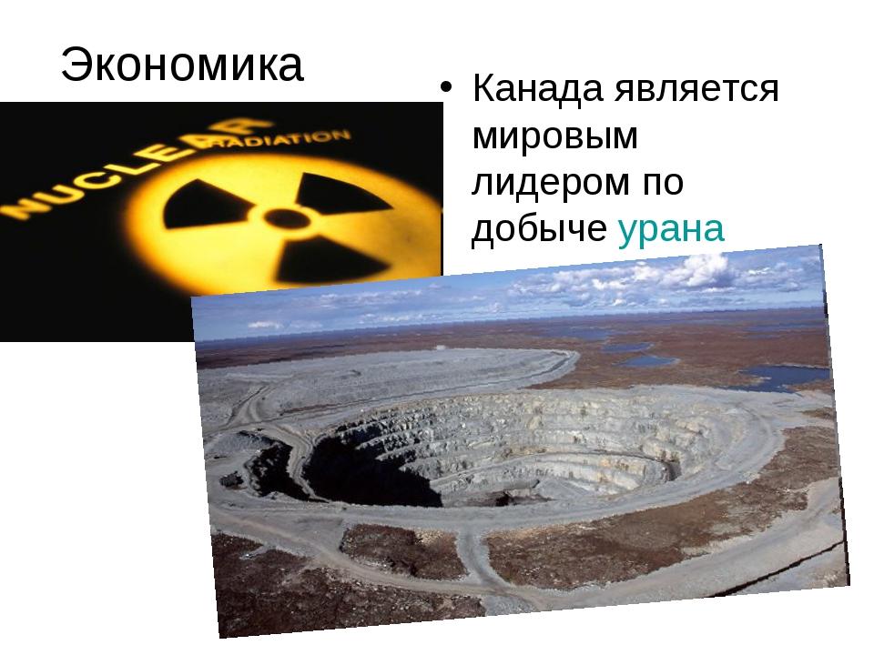 Экономика Канада является мировым лидером по добыче урана