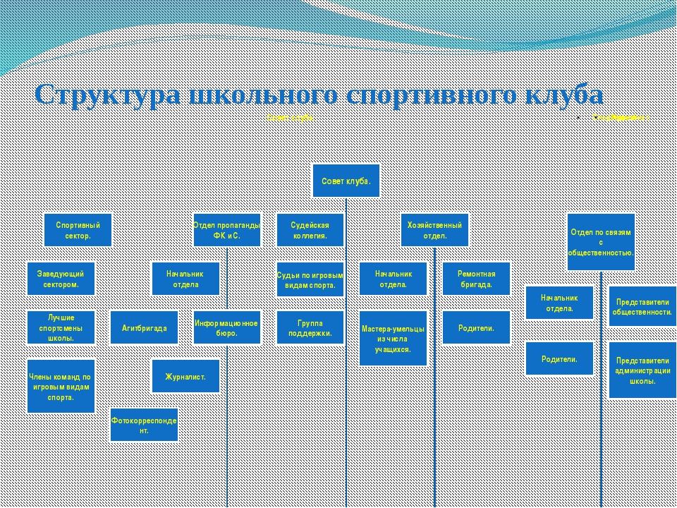 Структура школьного спортивного клуба