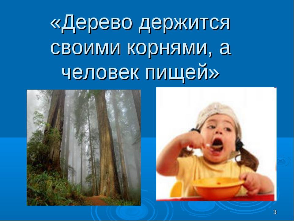 * «Дерево держится своими корнями, а человек пищей»
