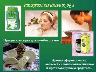 СЕКРЕТ ШИШЕК № 3 Прекрасное сырье для лечебных ванн. Аромат эфирных масел явл