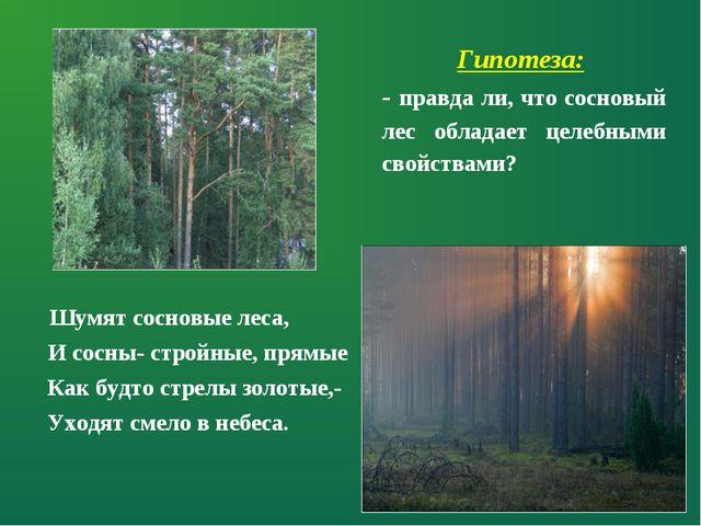 Шумят сосновые леса, И сосны- стройные, прямые Как будто стрелы золотые,- Ух...