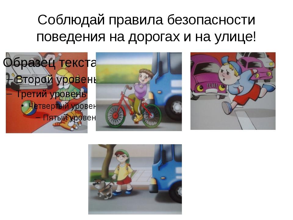 Соблюдай правила безопасности поведения на дорогах и на улице!