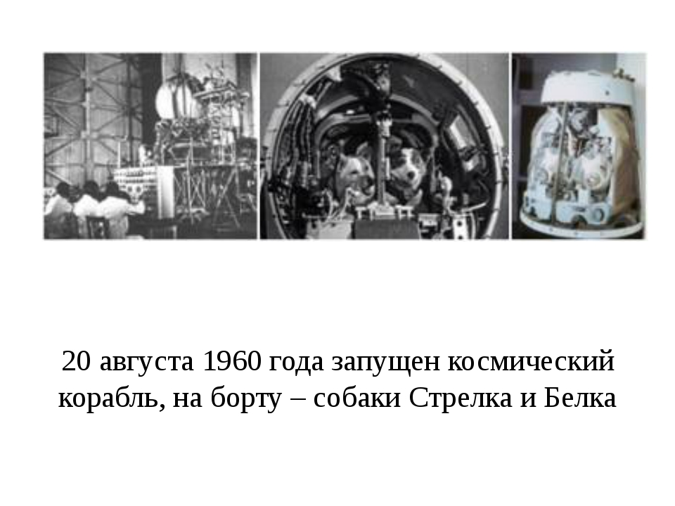 20 августа 1960 года запущен космический корабль, на борту – собаки Стрелка и...