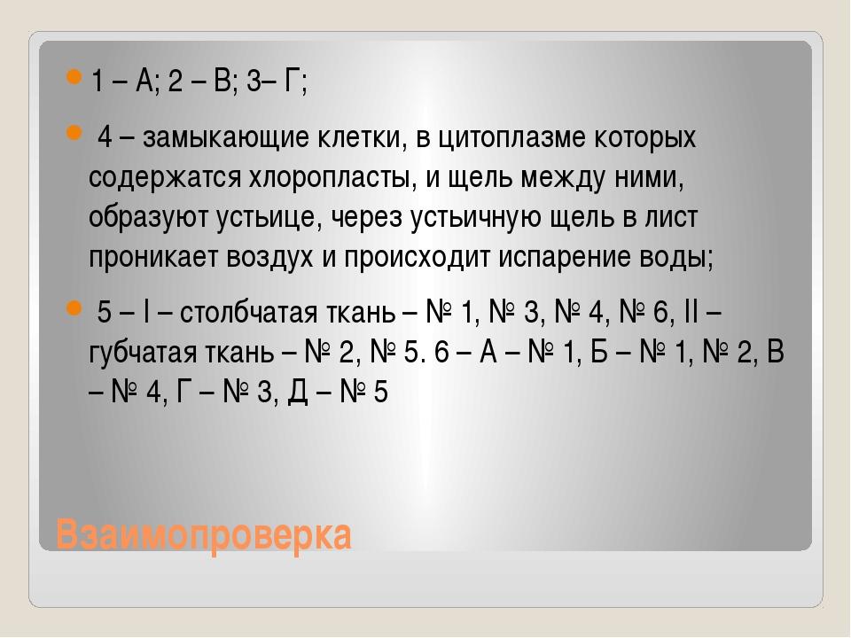 Взаимопроверка 1 – А; 2 – В; 3– Г; 4 – замыкающие клетки, в цитоплазме которы...