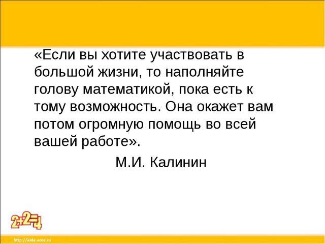 «Если вы хотите участвовать в большой жизни, то наполняйте голову математикой...