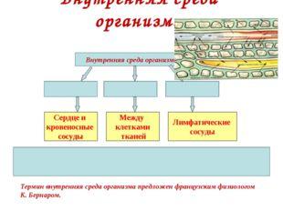 Внутренняя среда организма Внутренняя среда организма Терминвнутренняя среда