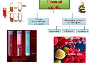Плазма (межклеточное вещество) лейкоциты эритроциты тромбоциты Форменные элем