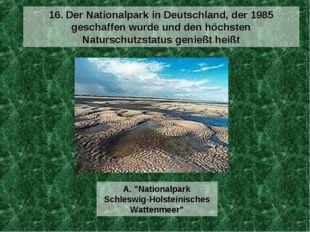 16. Der Nationalpark in Deutschland, der 1985 geschaffen wurde und den höchst