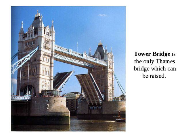 Tower Bridge is the only Thames bridge which can be raised.