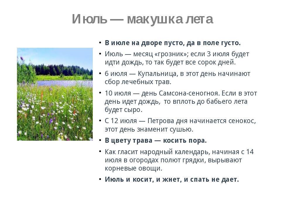 Июль — макушка лета В июле на дворе пусто, да в поле густо. Июль — месяц «гр...