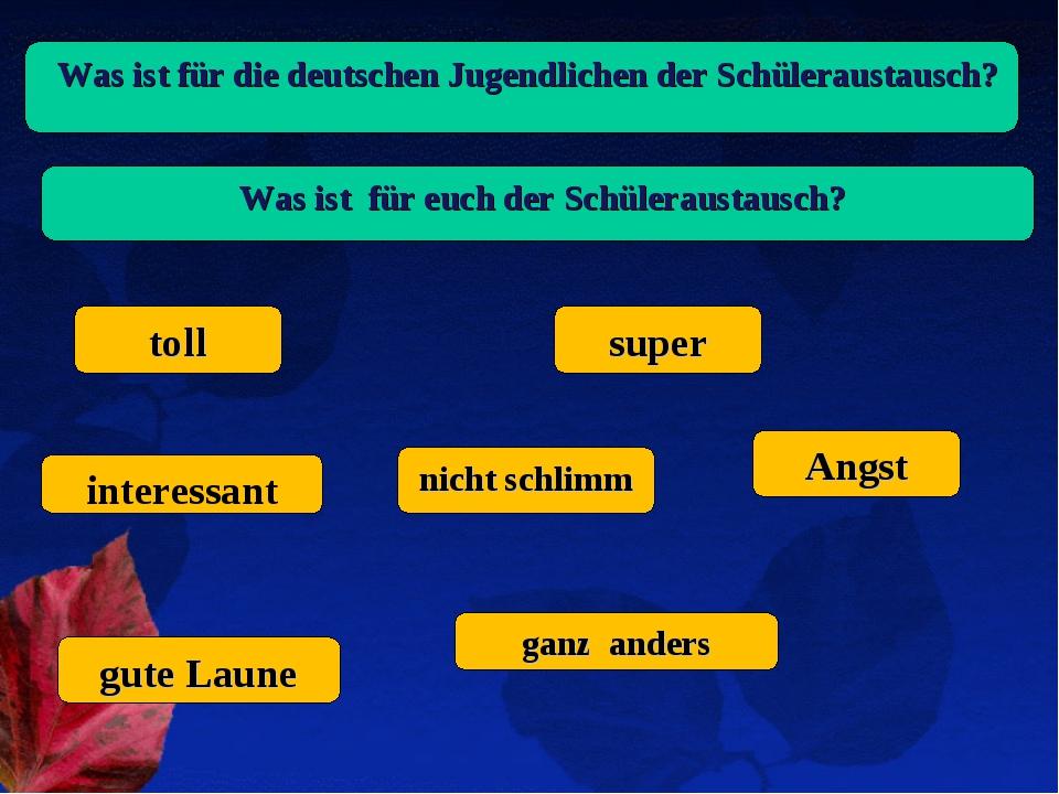 Was ist für die deutschen Jugendlichen der Schüleraustausch? Was ist für euc...