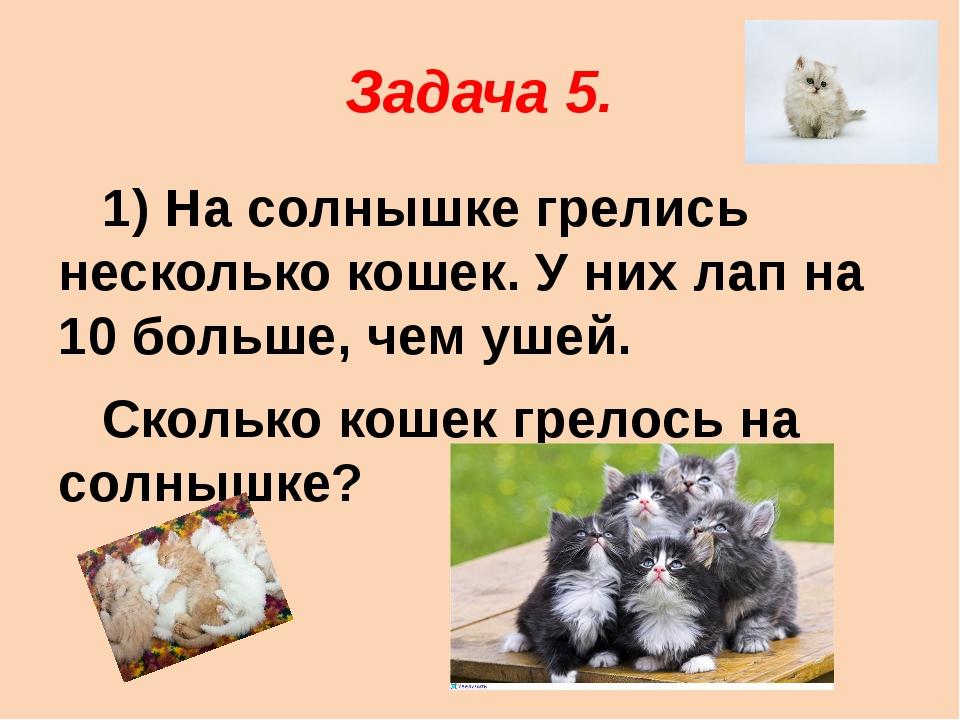Задача 5. 1) На солнышке грелись несколько кошек. У них лап на 10 больше, чем...