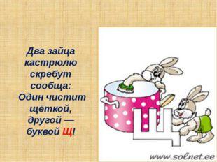 Два зайца кастрюлю скребут сообща: Один чистит щёткой, другой — буквой Щ!