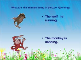 * What are the animals doing in the Zoo ?(be Ving) The wolf is running. The m
