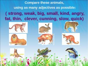 Compare these animals, using as many adjectives as possible: ( strong, weak,