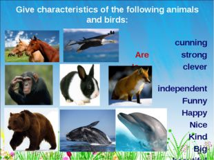 * Give characteristics of the following animals and birds: cunning Are strong