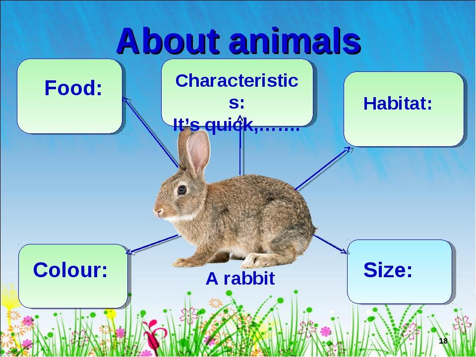 About animals * A rabbit Food: Characteristics: It's quick,……. Habitat: Colou...