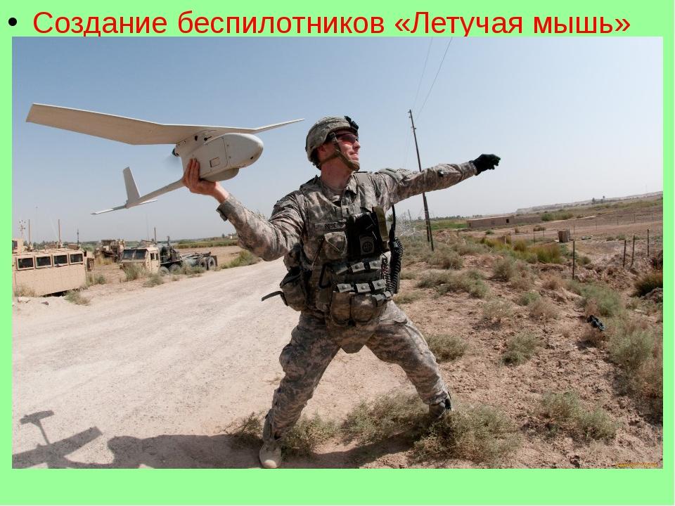 Создание беспилотников «Летучая мышь»