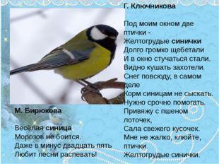 М. Бирюкова Весёлаясиница Морозов не боится. Даже в минус двадцать пять Люби