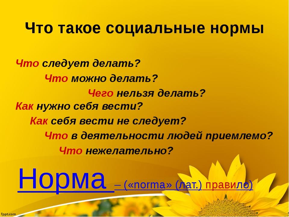 Что такое социальные нормы Норма – («norma» (лат.) правило) Что следует делат...