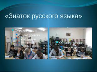 «Знаток русского языка»