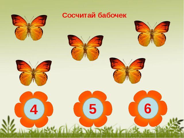 Сосчитай бабочек 4 5 6