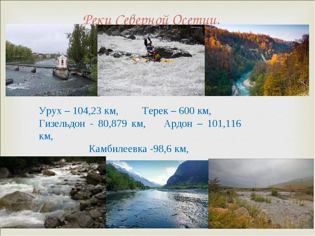 Реки Северной Осетии. Урух – 104,23 км, Терек – 600 км, Гизельдон - 80,879 км...