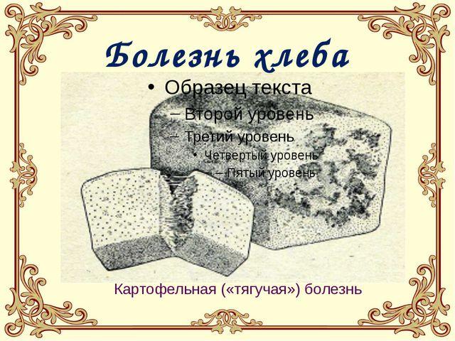 Картофельная («тягучая») болезнь Болезнь хлеба