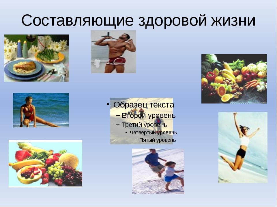 Составляющие здоровой жизни