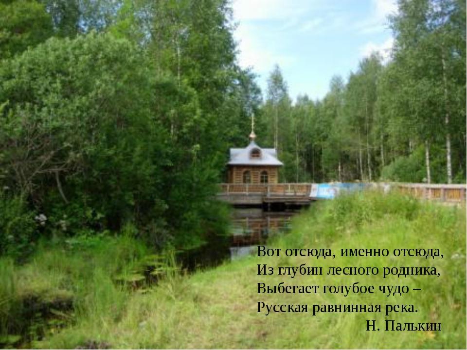 Вот отсюда, именно отсюда, Из глубин лесного родника, Выбегает голубое чудо –...