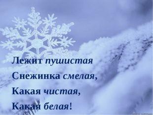 Лежит пушистая Снежинка смелая, Какая чистая, Какая белая!