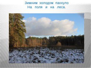 Зимним холодом пахнуло На поля и на леса.