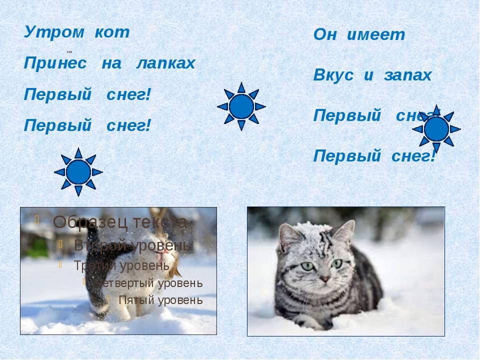 *** Он имеет Вкус и запах Первый снег! Первый снег! Утром кот Принес на лапк...