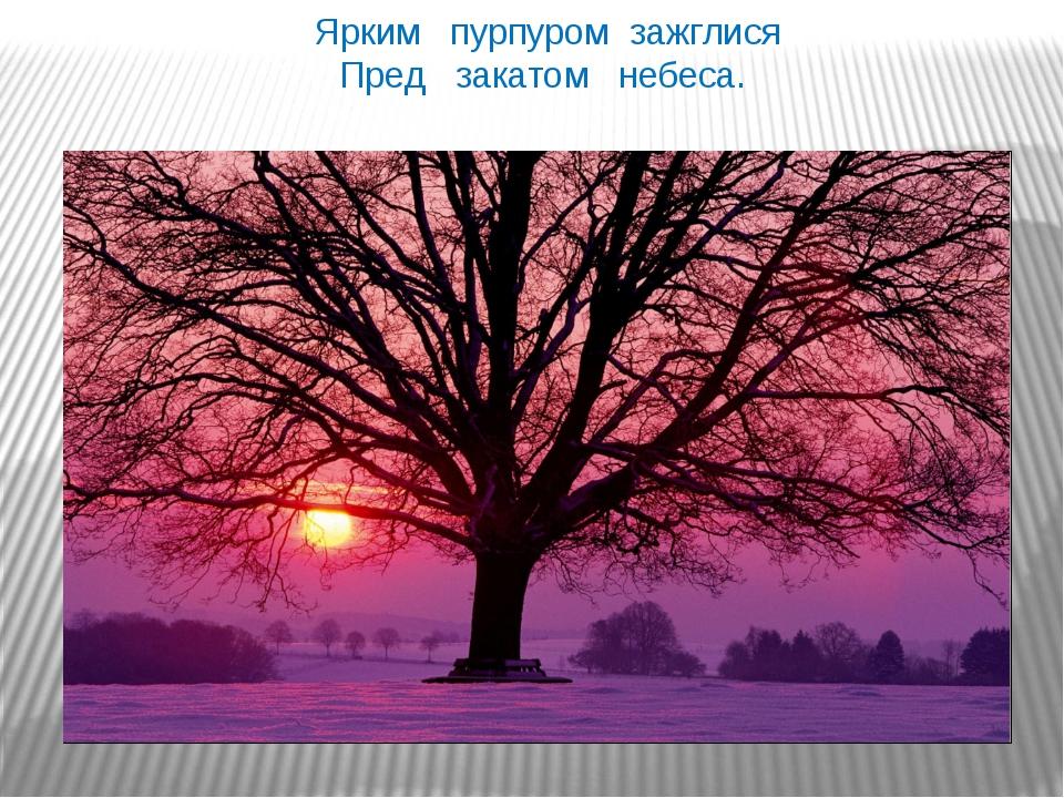 Ярким пурпуром зажглися Пред закатом небеса. Ярким пурпуром зажглися Пред за...
