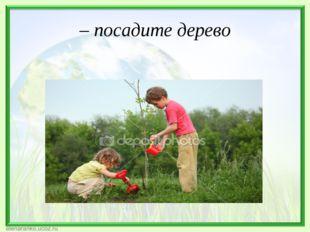 – посадите дерево