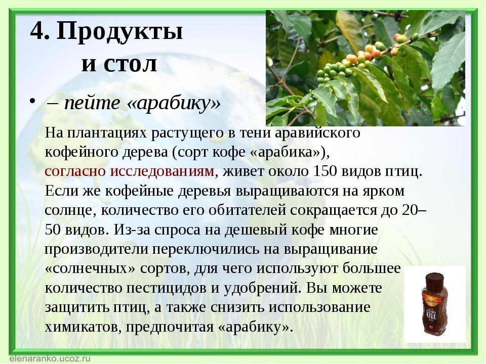 4. Продукты и стол – пейте «арабику» На плантациях растущего в тени аравийск...