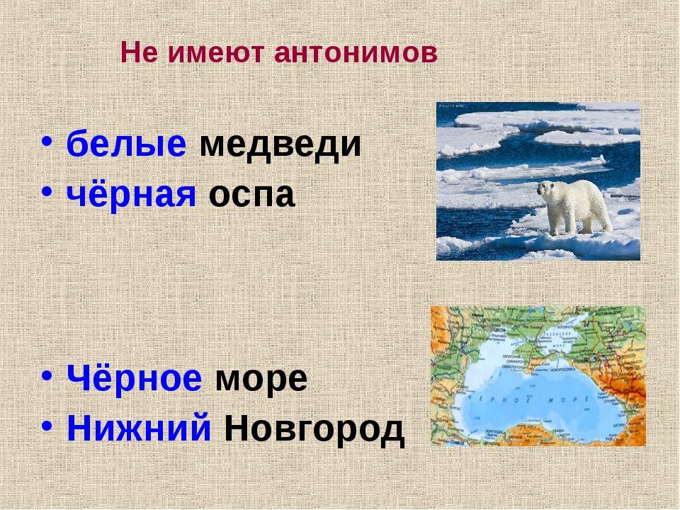 белые медведи чёрная оспа Чёрное море Нижний Новгород Не имеют антонимов