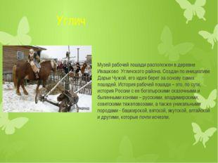 Углич Музей рабочей лошади расположен в деревне Ивашково Угличского района.
