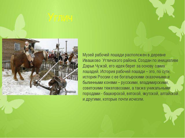 Углич Музей рабочей лошади расположен в деревне Ивашково Угличского района....