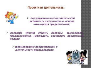 Проектная деятельность: поддержание исследовательской активности школьников н