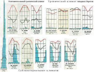 Континентальный тропический климат С у б э к в а т о р и а л ь н ы е к л и м