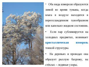 Оба вида изморози образуются зимой во время тумана, когда влага в воздухе на
