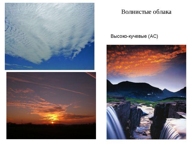 Волнистые облака Высоко-кучевые (AC)
